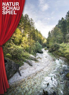 Das Bild zeigt eine Landschaft, in der ein kleiner glasklarer Fluss durch den Wald fließt.