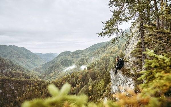 20_hauptsujet_nasp2020_c_tvb_steyr_nationalpark_region_max_mauthner_ifau